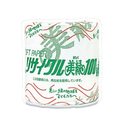 【リサイクル美緑】100M シングル